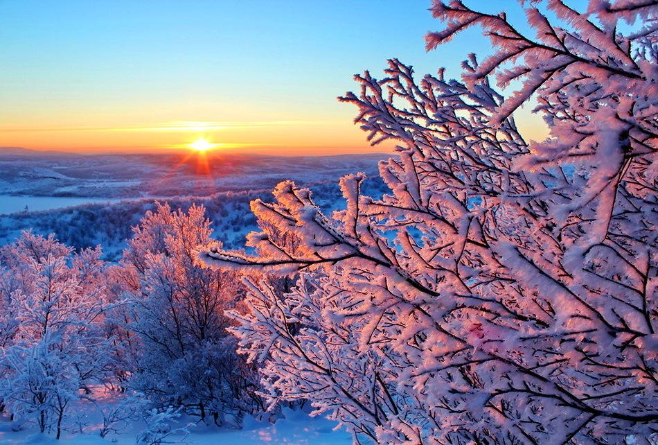 красивое фото про зимнее утро какое пальто