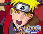 Играть в Ninja world