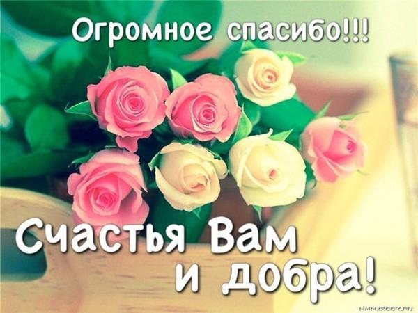 https://content-15.foto.my.mail.ru/mail/pryaslina/_deti/i-2.jpg